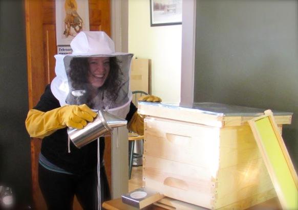 bee box 2