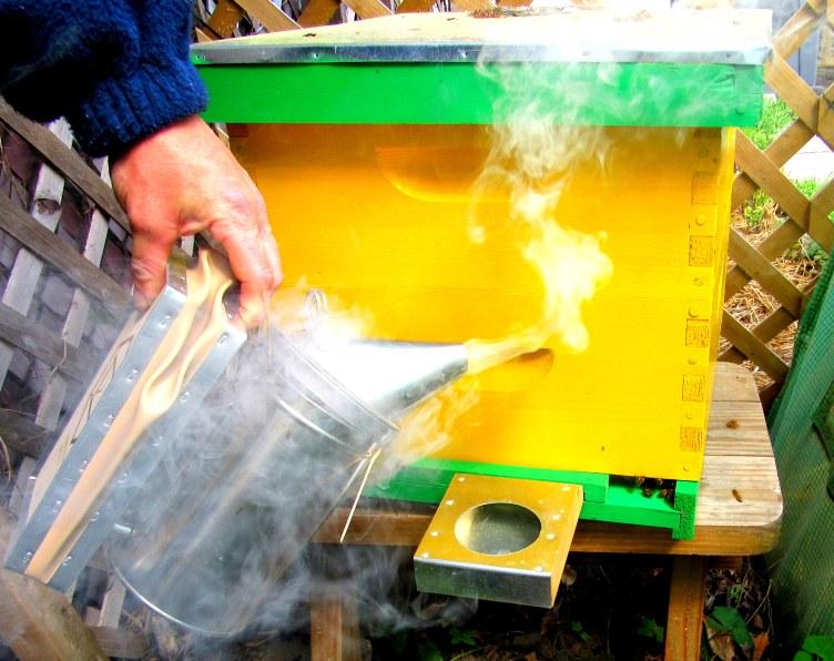 smoking the box