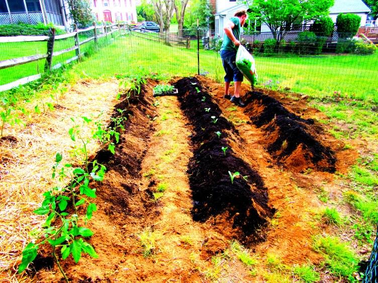 building a plot