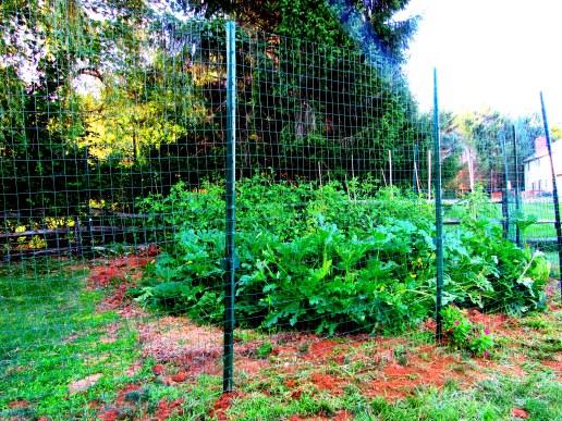 deer fence 2 - Copy (2)