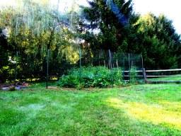 deer fence 5 - Copy