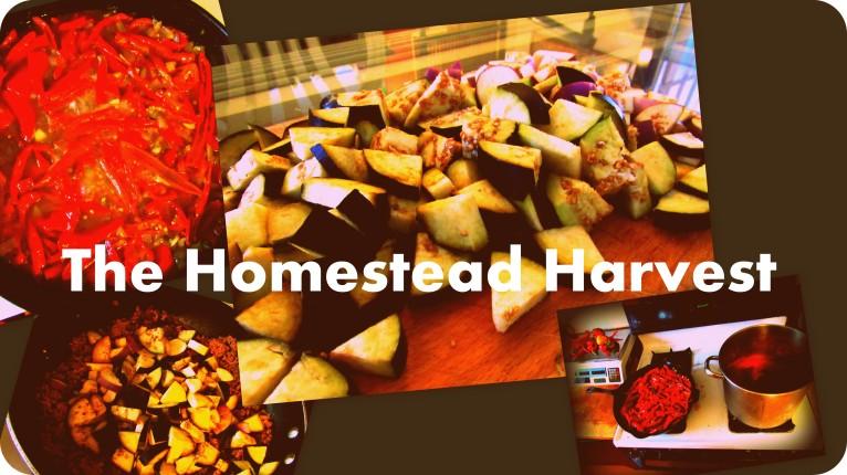 9.14 homestead harvest